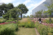 あさひかわ北彩都ガーデン