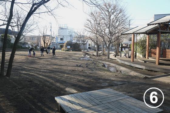 ねこじゃらし公園6