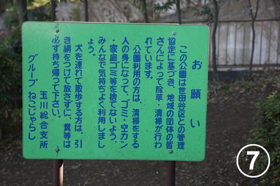 ねこじゃらし公園7
