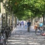 第10回 公共空間事例|デュッセルドルフ(ドイツ)