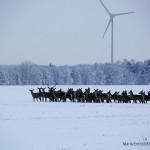 消費者が好きな電力を選べる~スウェーデンの電力市場自由化