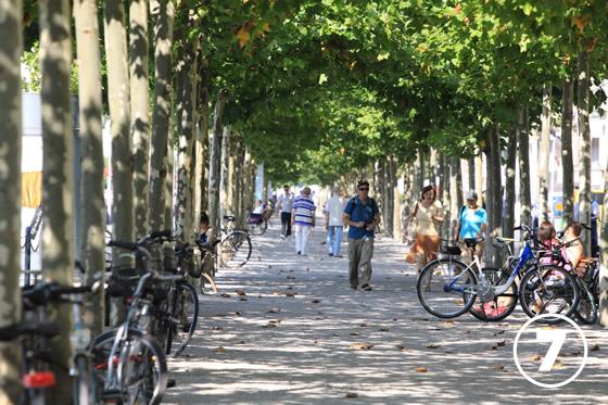 ライン・プロムナード(Rhein Promenade)7