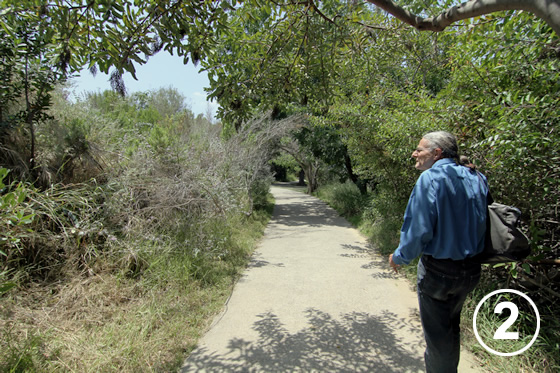 オーガスタス・F・ホーキンス自然公園(Augustus F. Hawkins Natural Park)2