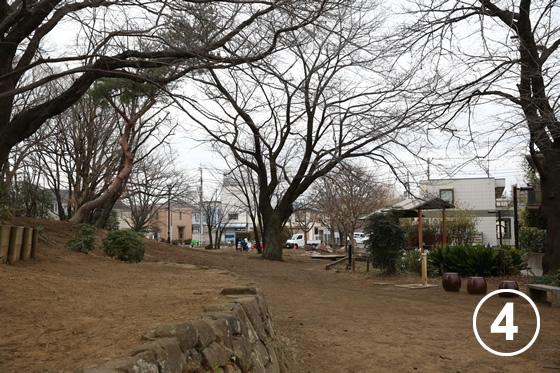 ねこじゃらし公園4
