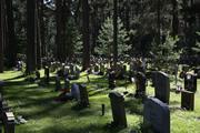 森の墓地(スコーグシュルコゴーデン)