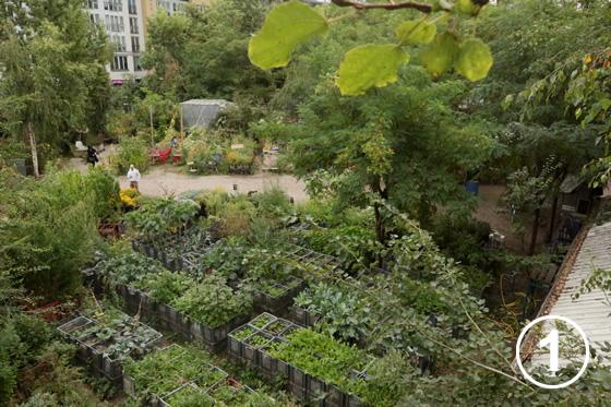 186 プリンツェシンネン菜園