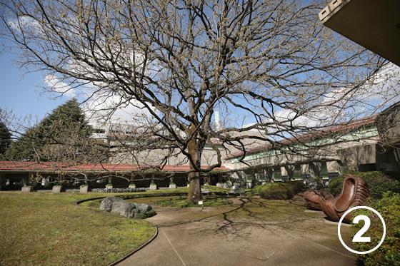 世田谷美術館2
